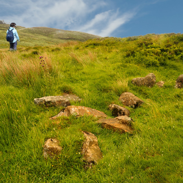 """Walking in County Wicklow, Ireland"" stock image"