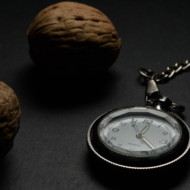 """""""Pocket watch and walnuts"""" stock image"""