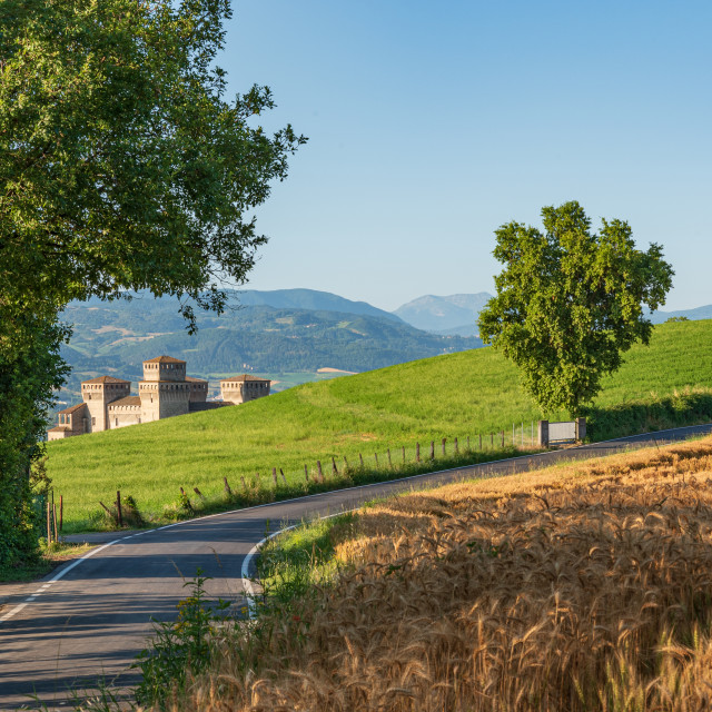 """""""Castle surrounded by green fields and wheat fields in Italy"""" stock image"""