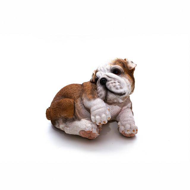 """Reproduction of an English Bulldog"" stock image"