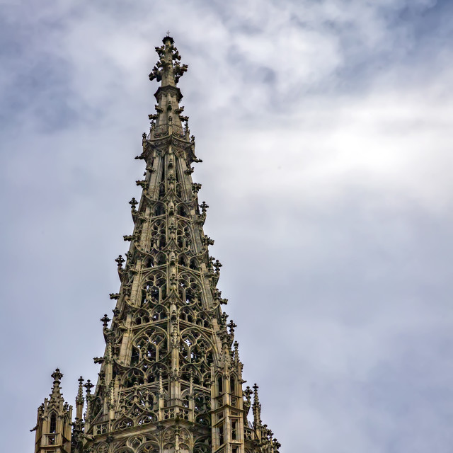 """""""the tower"""" stock image"""