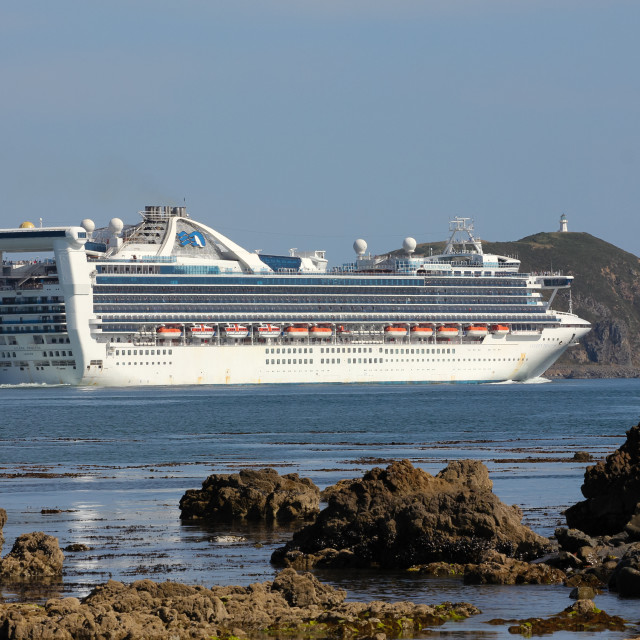 """Golden Princess 4"" stock image"