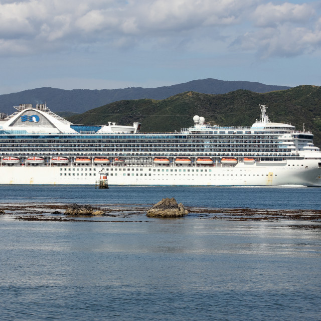 """Golden Princess 1"" stock image"