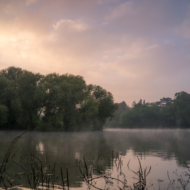 """""""The Tahmes river near Twickenham, London on a cool, misty morning"""" stock image"""