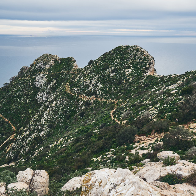 """""""Huge cliff covered with vegetation and Mediterranean Sea cloudy"""" stock image"""
