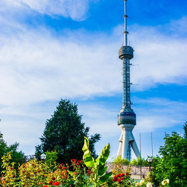"""""""Tashkent Television Tower, Uzbekistan"""" stock image"""