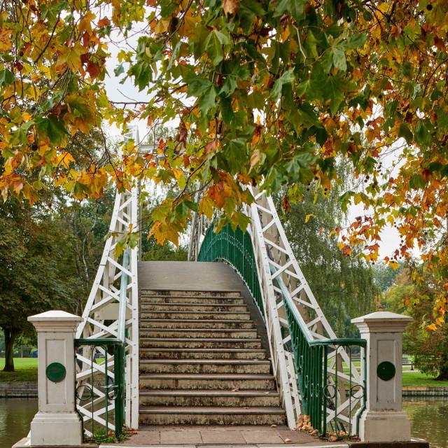 """""""Bedford Suspension Bridge"""" stock image"""