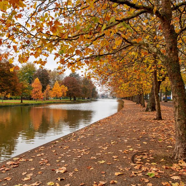 """Autumn colours along The Embankment, Bedford"" stock image"