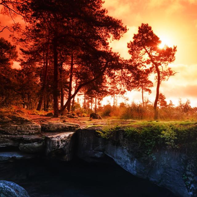 """""""Beatrix grotto"""" stock image"""