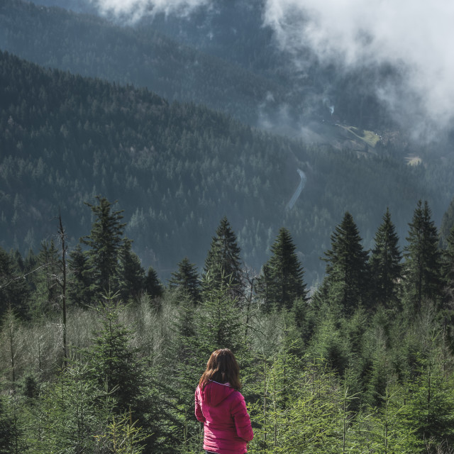 """""""Girl contemplating mountains view in the Black Forest Germany"""" stock image"""