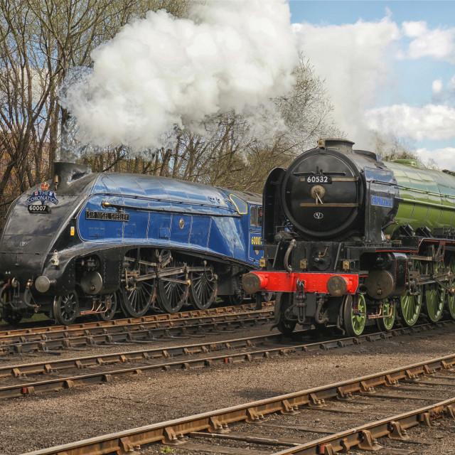 """LNER Pacific Locomotives"" stock image"