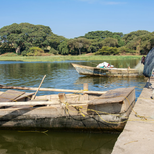 """fishing at lake awassa"" stock image"