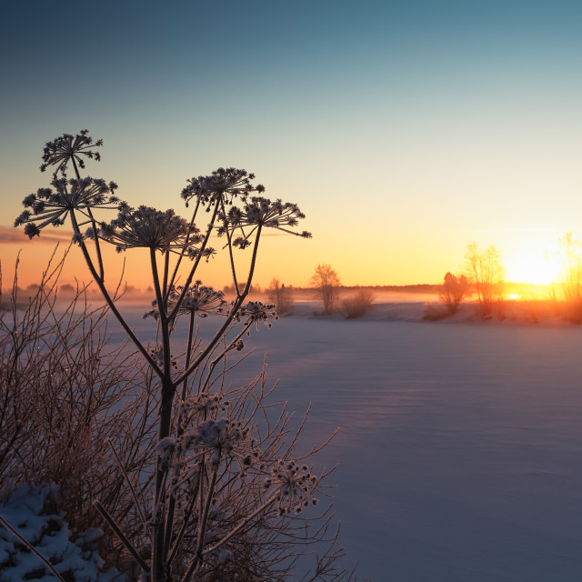 """""""Sunset And Mist Over An Icy River"""" stock image"""