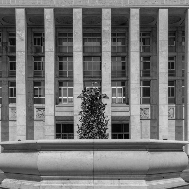 """""""symmetrical black and white image of a very large building"""" stock image"""
