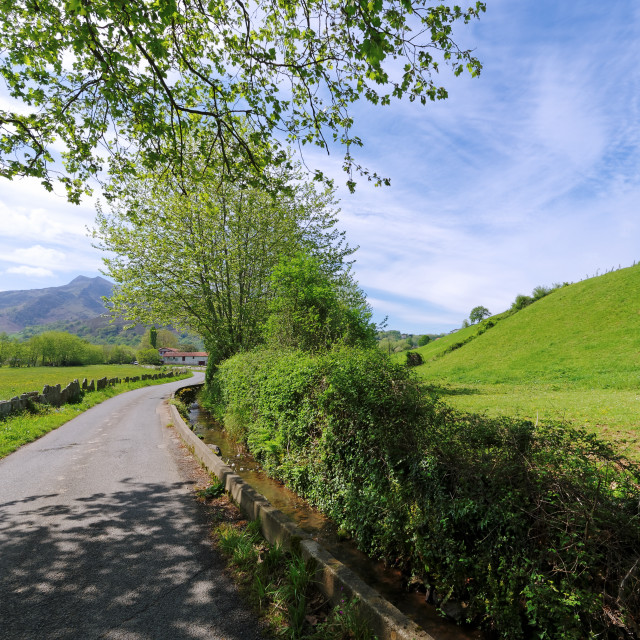 """""""country road in the Basque country"""" stock image"""