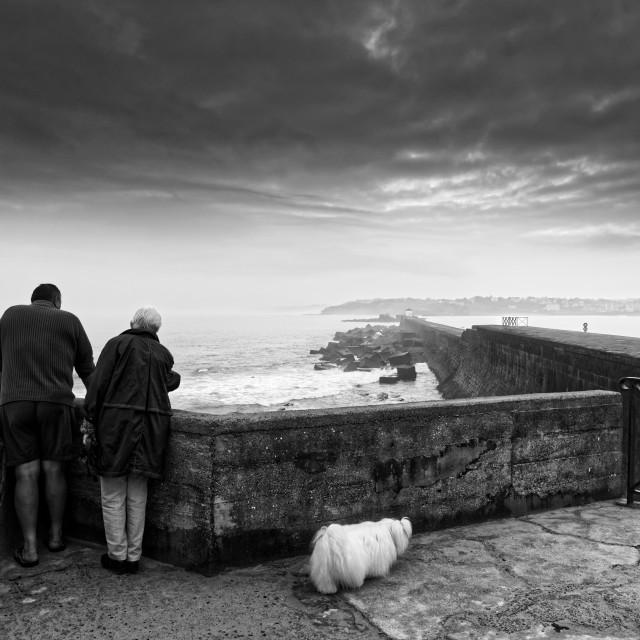 """Socoa coast in black and white"" stock image"