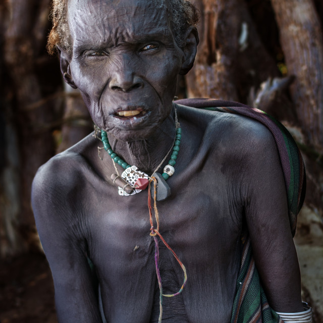 """""""dassenech tribe in south omo valley ethiopia"""" stock image"""