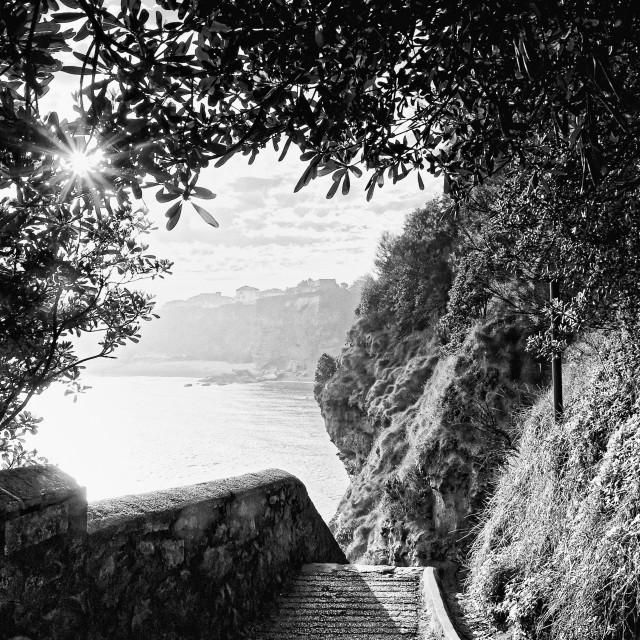 """Biarritz cliff"" stock image"