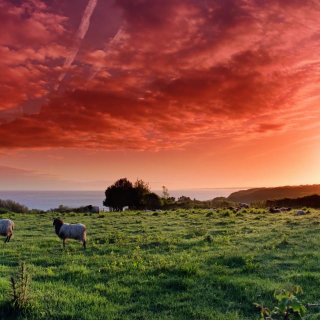 """""""Basque sunrise"""" stock image"""