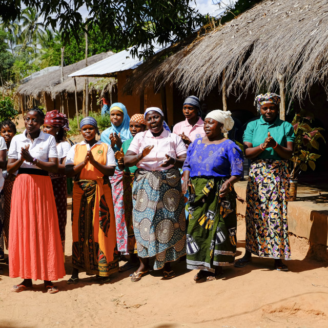 """""""Group of african women chanting a welcome song"""" stock image"""