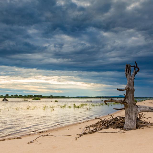 """""""The Rufiji Island"""" stock image"""