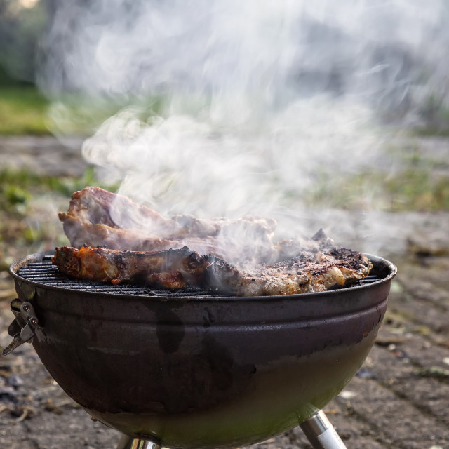 """""""Meat on a barbecue"""" stock image"""