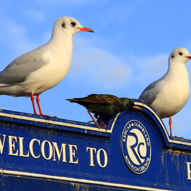 """""""Welcome to Redcar"""" stock image"""
