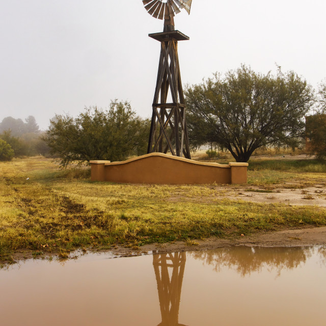 """""""Old Windmill Reflection in a Muddy Pond"""" stock image"""