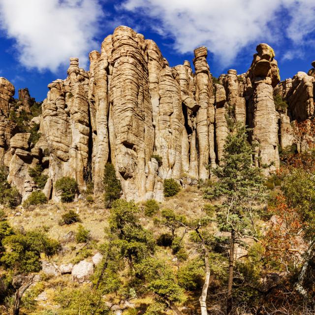 """Stone Columns at Chiricahua National Monument"" stock image"