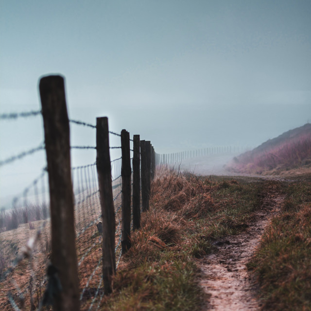 """Path - Foggy morning"" stock image"