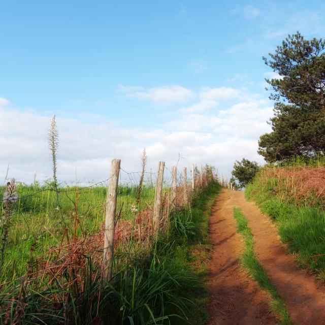 """Hiking path"" stock image"