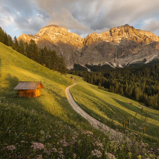 """""""Evening Dolomites"""" stock image"""