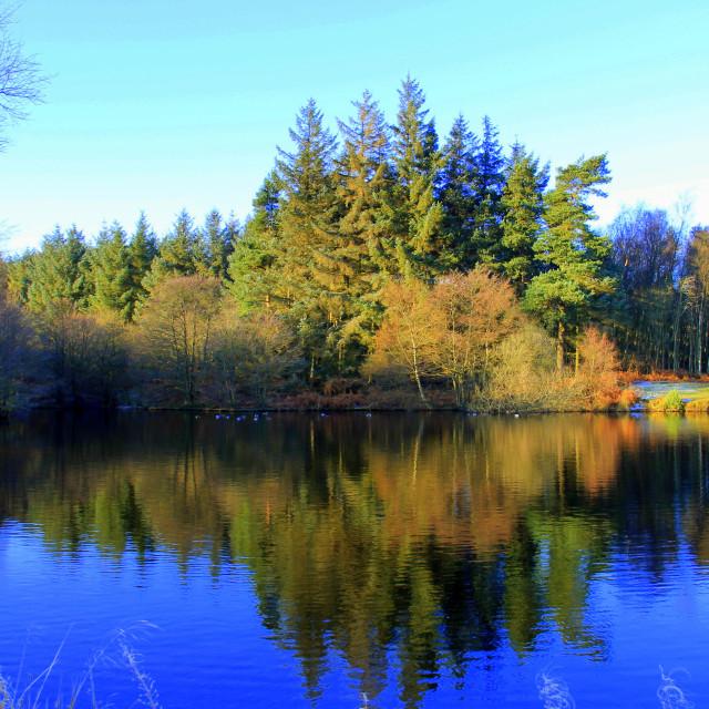 """""""Vivid colours and reflections at Lockwood Beck lake."""" stock image"""