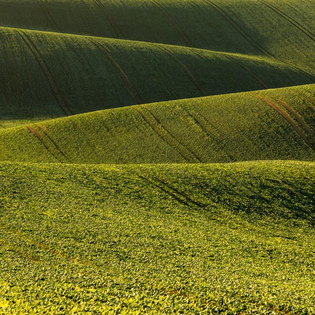"""Moravian Tuscany"" stock image"