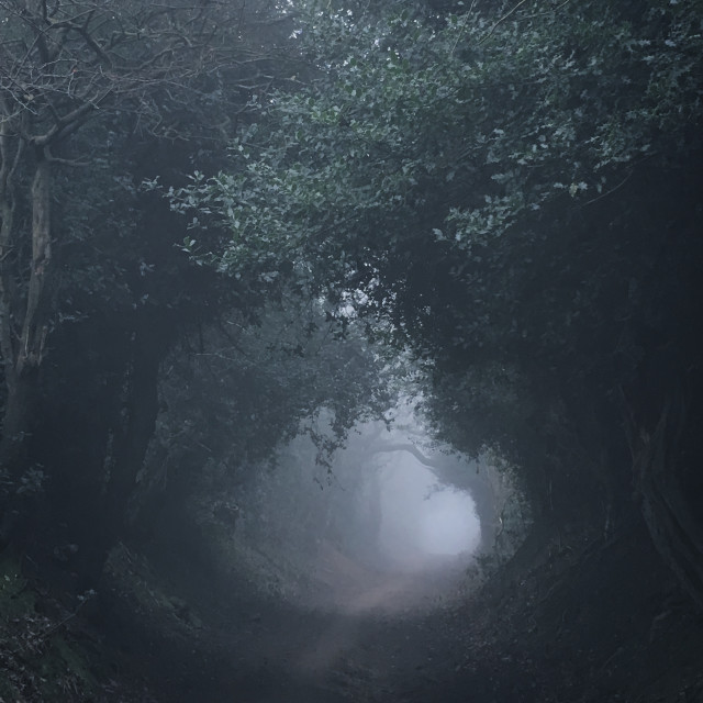 """""""Foggy tunnel"""" stock image"""