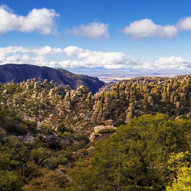 """Hoodoos of Chiricahua National Monument"" stock image"