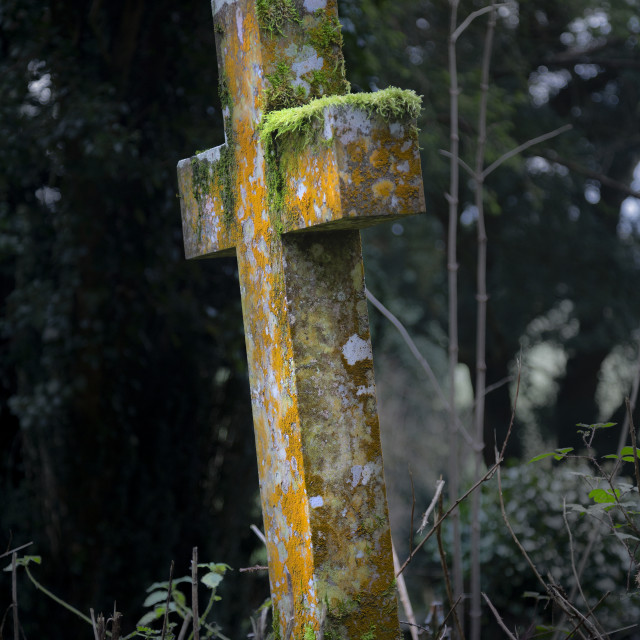 """Old moss covered gravestone"" stock image"