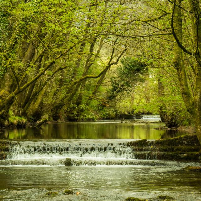 """the river tawe at craig y nos"" stock image"