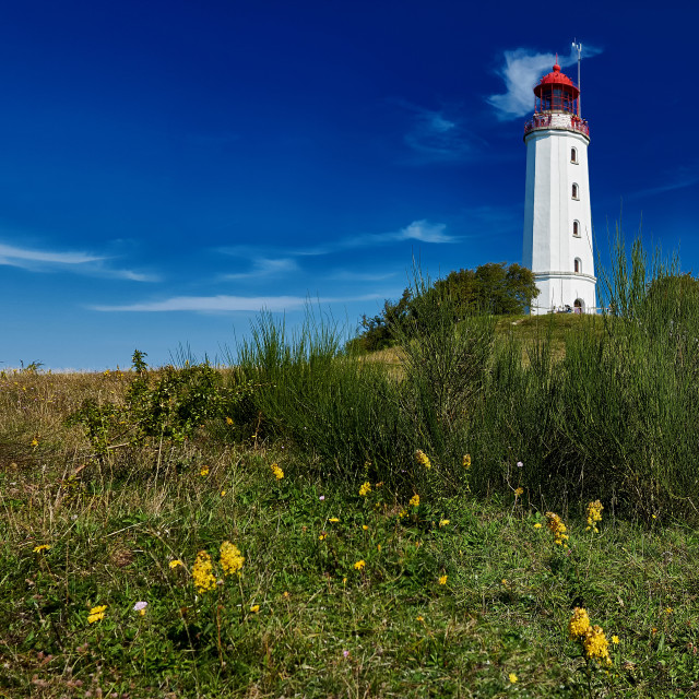 """lighthouse Dornbusch on Isle Hiddensee"" stock image"