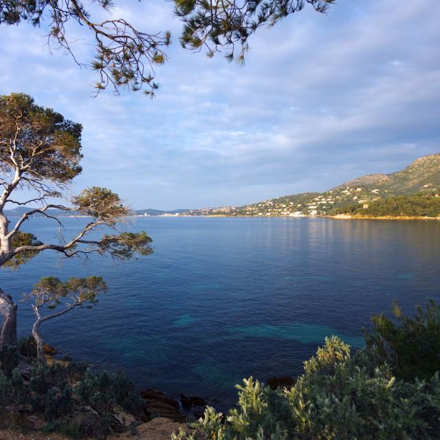 """""""Lavandou coast"""" stock image"""