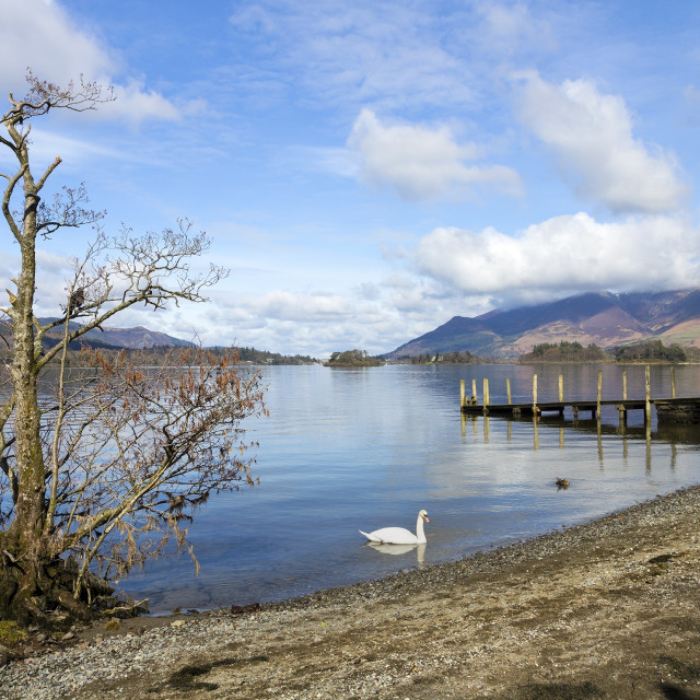 """""""Derwent Water and Skiddaw, Borrowdale, Lake District, Cumbria"""" stock image"""