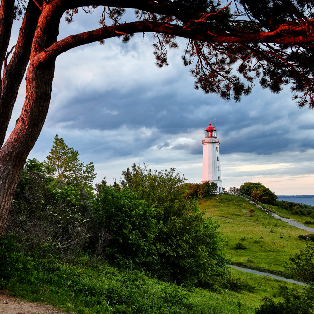 """view on lighthouse lighthouse Dronbusch on island Hiddensee"" stock image"