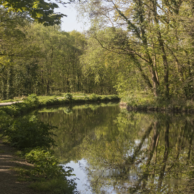 """Swansea Canal near Clydach, Swansea, South Wales, UK"" stock image"