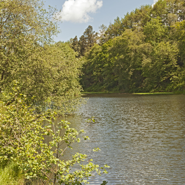 """Upper Lake, Penllergare Valley Woods, Penllergaer, Swansea, South Wales, UK"" stock image"