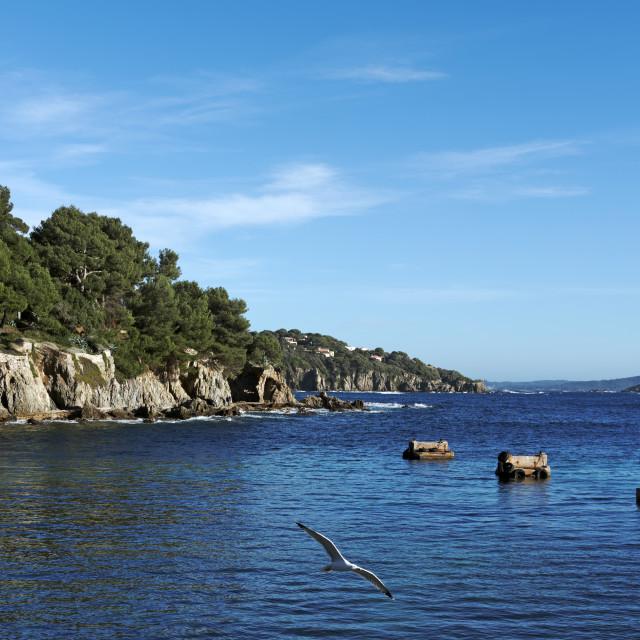 """Le Niel harbor"" stock image"