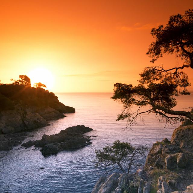 """""""Lavandou rocky coast"""" stock image"""