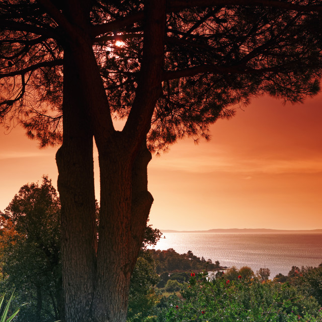 """French riviera sunrise"" stock image"