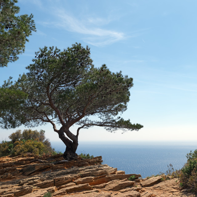 """Mediterranean view"" stock image"