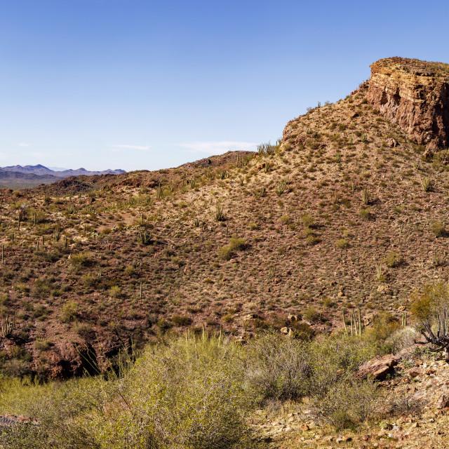 """Mountain Slope in Organ Pipe Cactus National Monument, Arizona"" stock image"