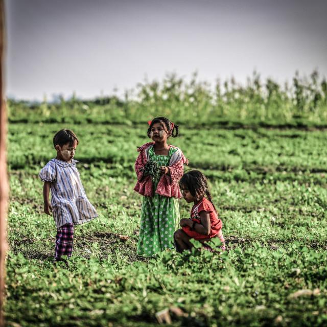 """Myanmar children playing at ubien bridge"" stock image"